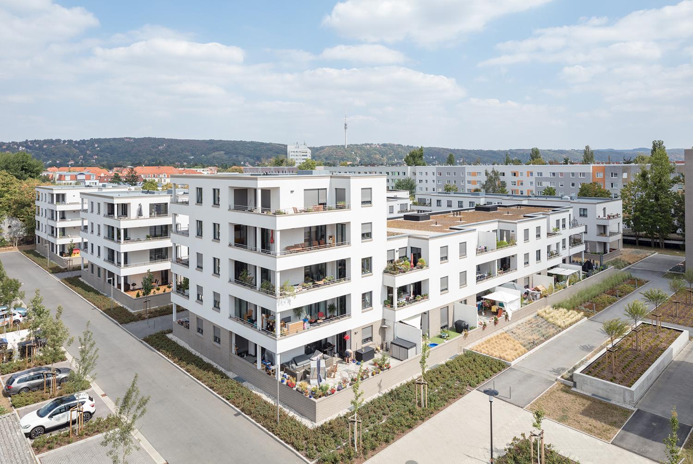 Schuster Dresden